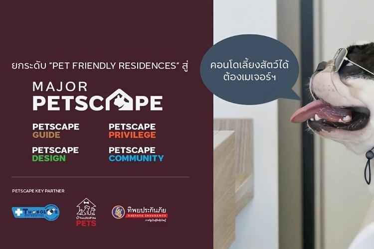 Petscape1-01