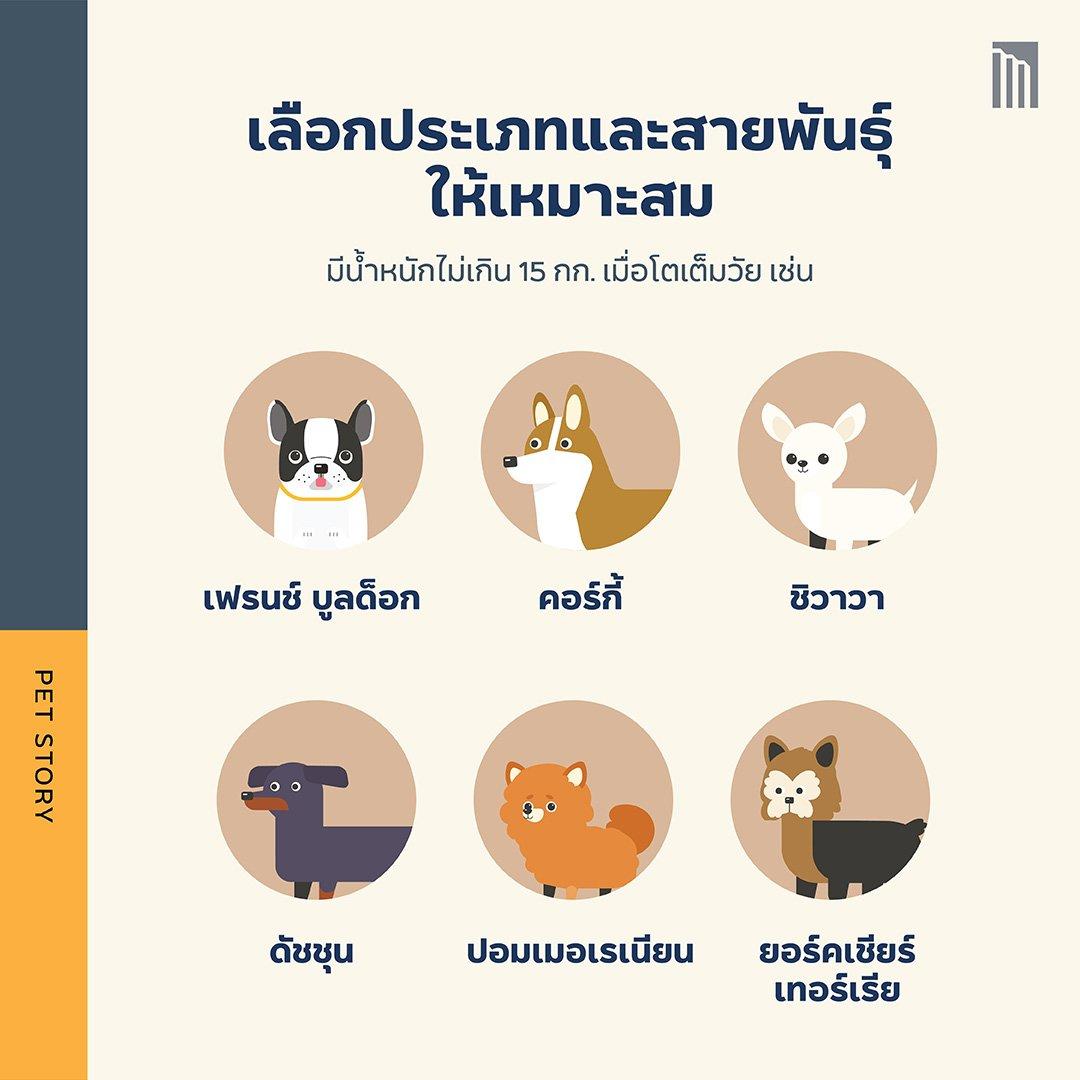 210513-Pet-Guide-ทำห้าข้อนี้_FB-Inside-1.2.jpg
