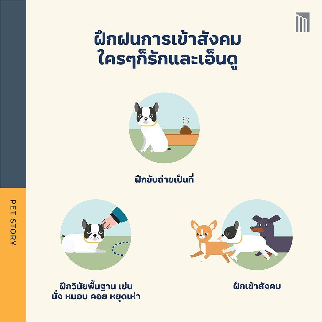 210513-Pet-Guide-ทำห้าข้อนี้_FB-Inside-1.4.jpg