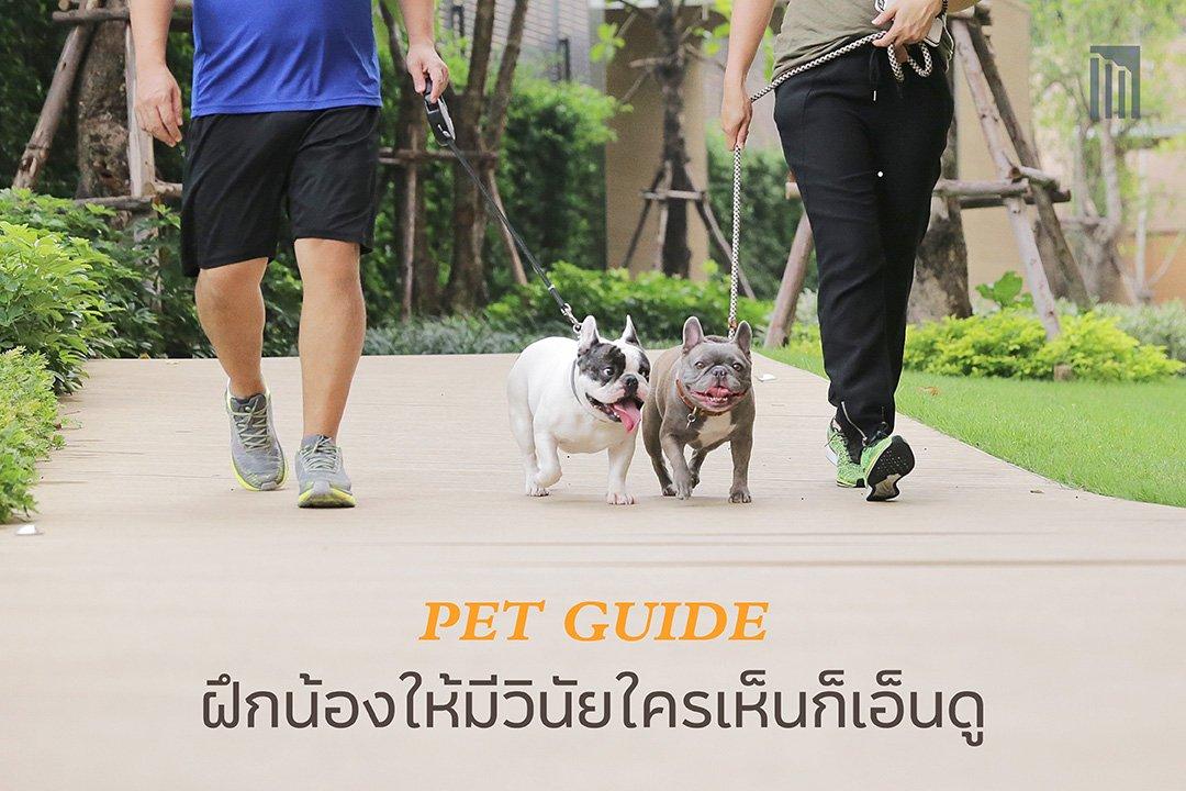 210610-PET-GUIDE-ฝึกน้องให้มีวินัย-ใครเห็นก็เอ็นดู_FB-Cover-1.1.jpg