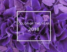 ไอเดียการแต่งคอนโดด้วยสี Pantone 2018
